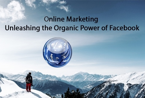Unleash the Organic Power of Facebook - Business Marketing Strategies