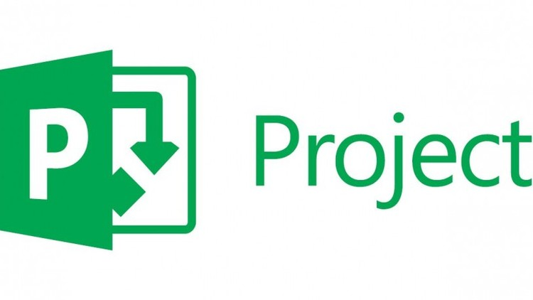 Microsoft Project 2013: Training for Beginners (New)
