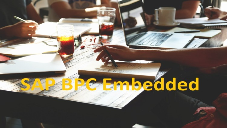 SAP BPC Embedded Fundamentals for Planning Application