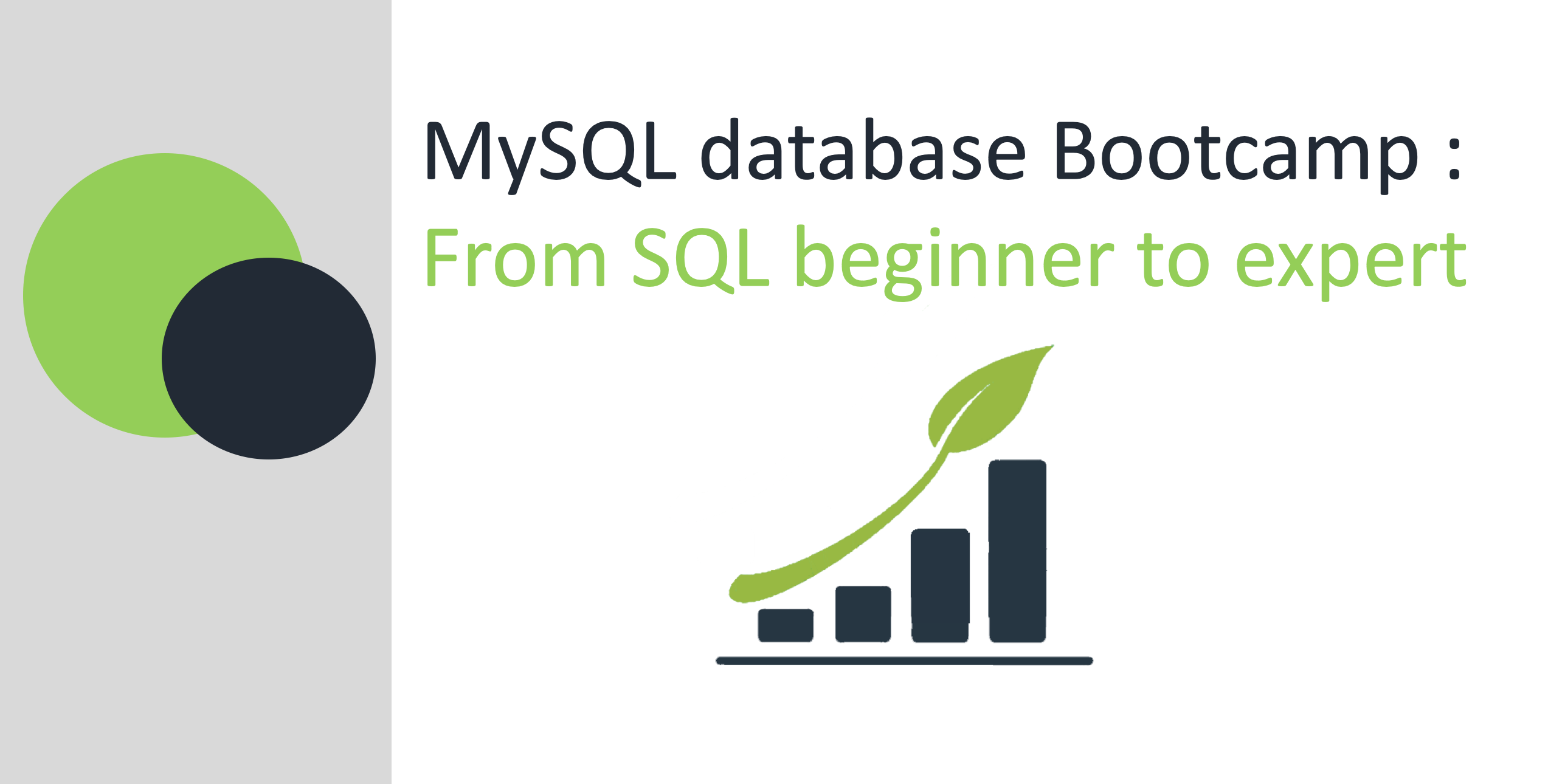 MySQL Database Bootcamp: Go from SQL Beginner to Expert
