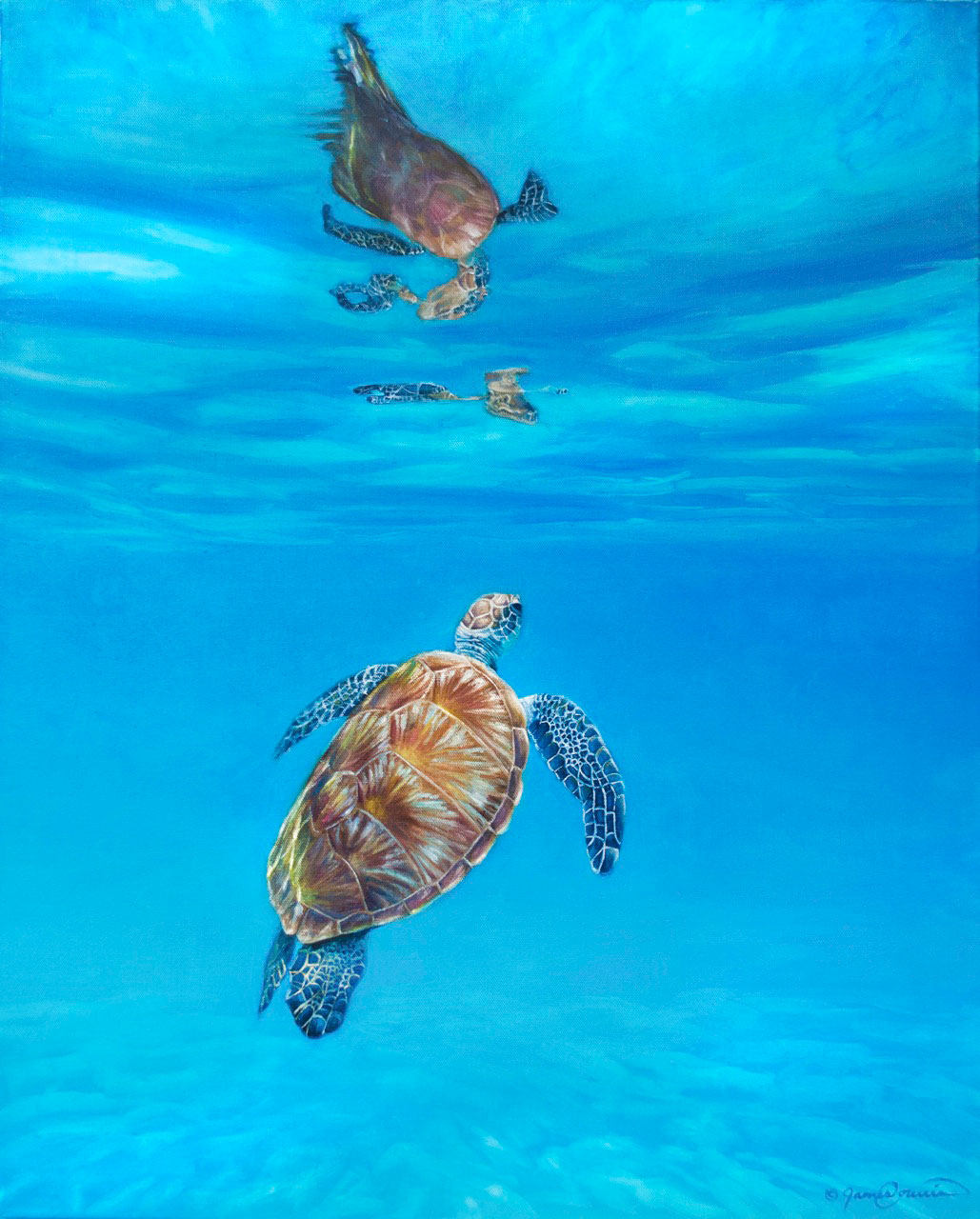 Learn to Paint a Sea Turtle Step-by-Step!