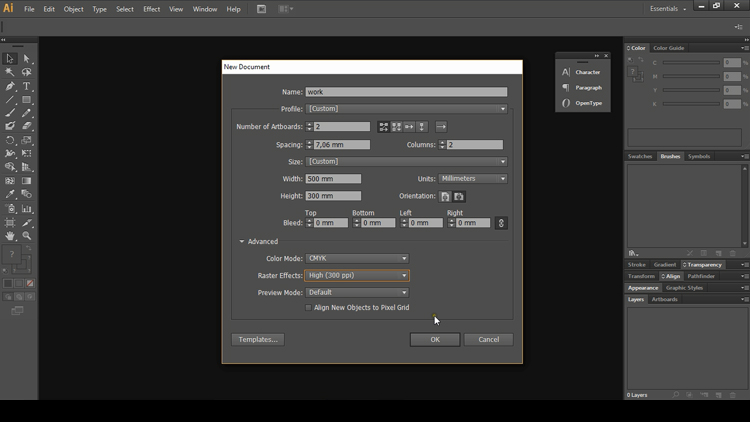 Adobe Illustrator basics