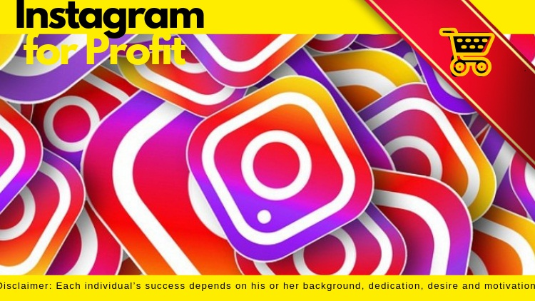 Instagram for Profit - Step by Step Mastery Course 2019
