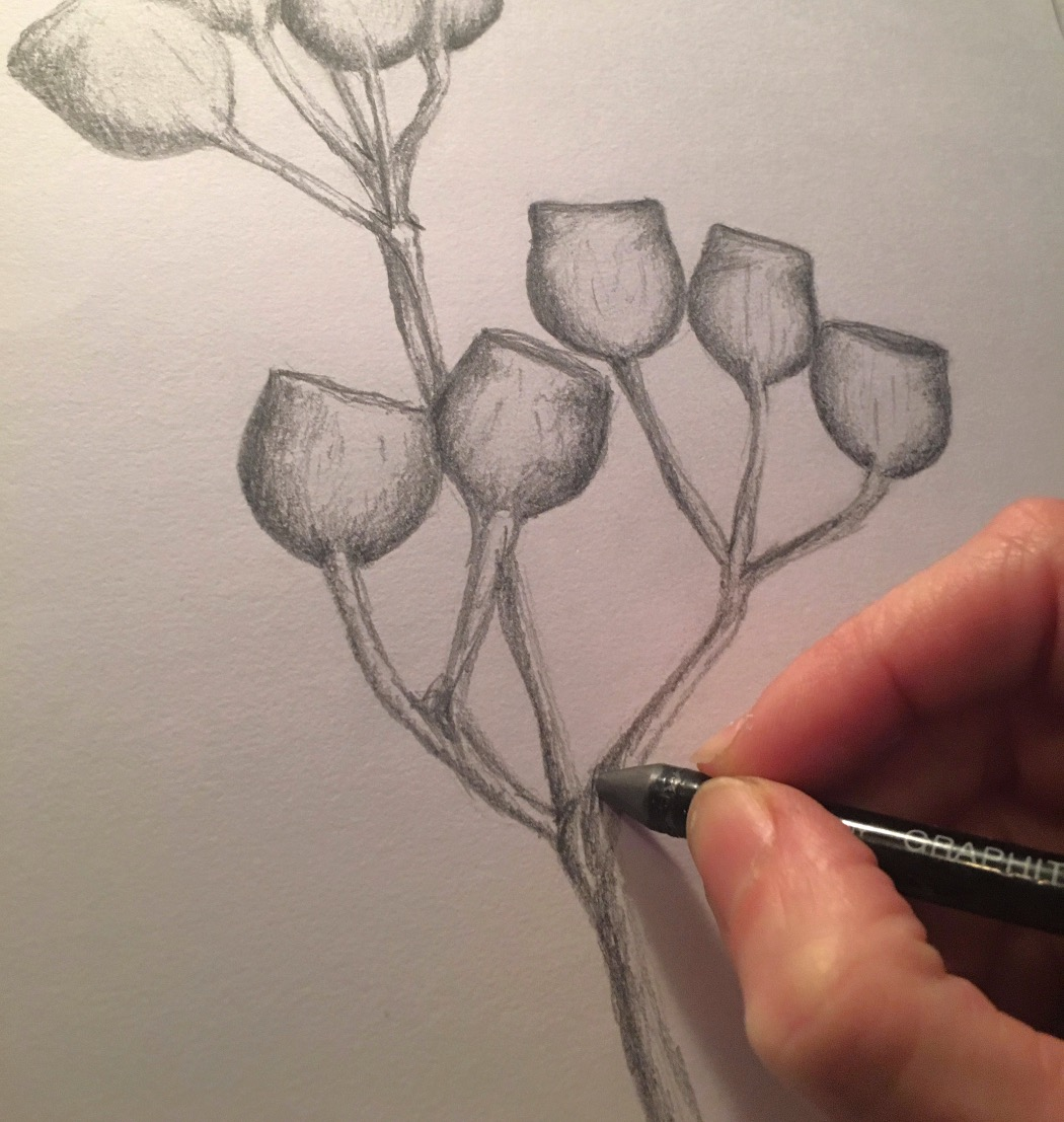 Conscious Drawing Techniques