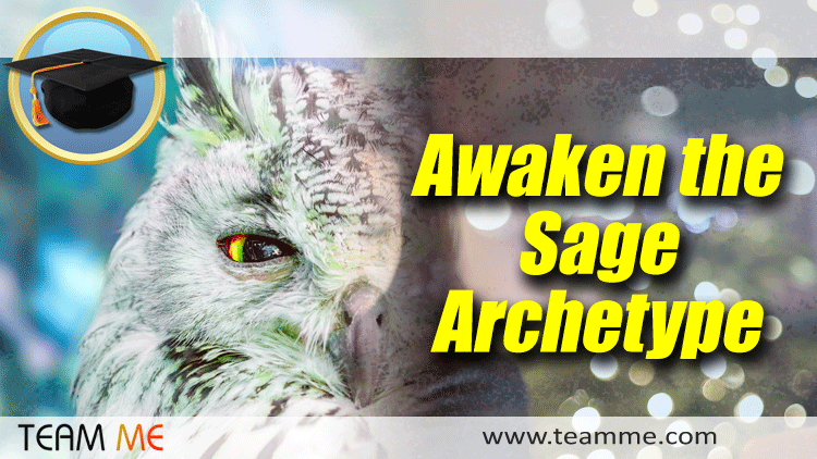 Team Me - Awaken the Sage Archetype
