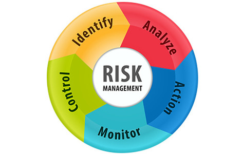 Project Risk and Change Management