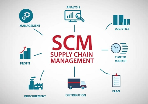 Supply Chain Management: System Processes