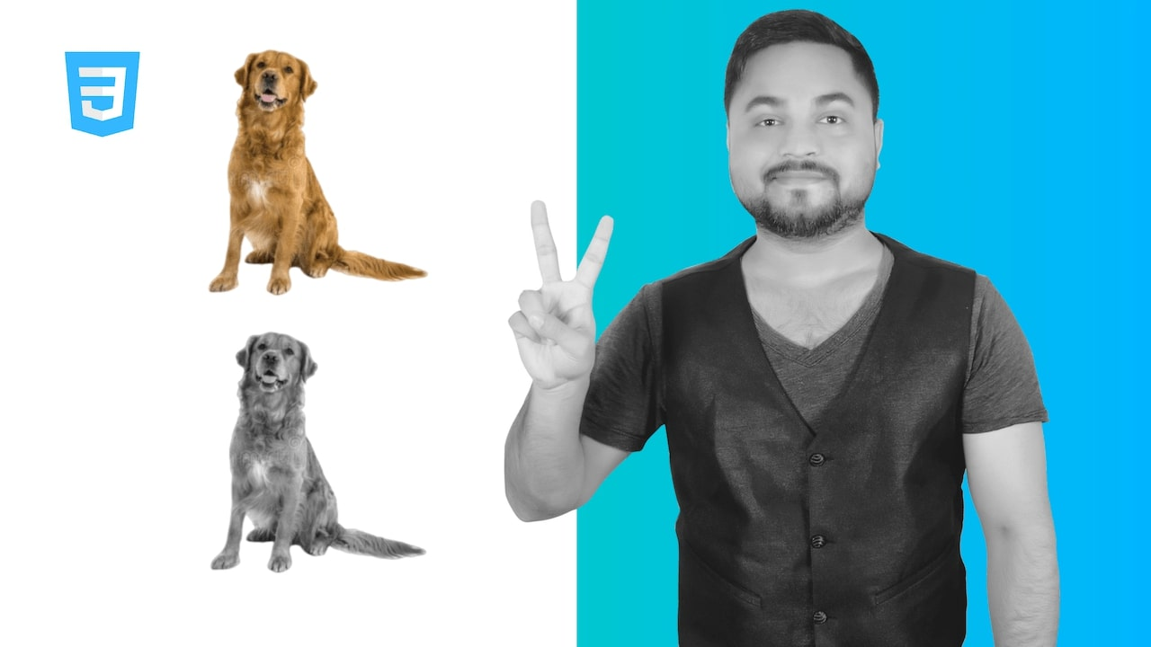 CSS Image Filters - Adding Visual Effects To Images (2020)