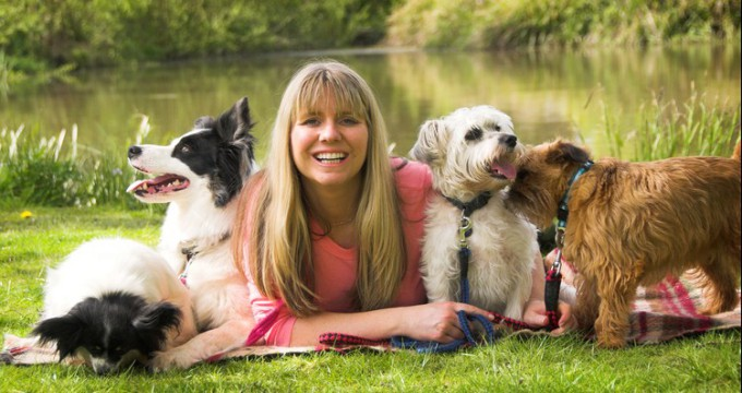 Dog Training - Running A Dog Training Business