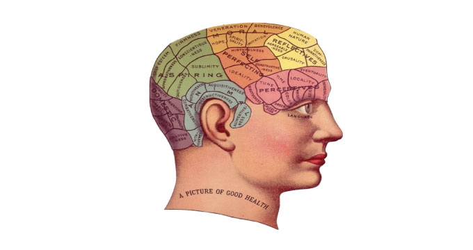 Cognitive Psychology - Learning and Memory