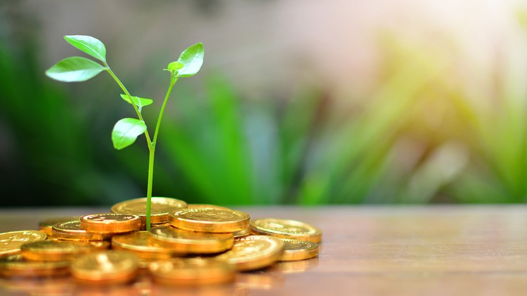 Buy Hard: Total Beginners' Guide to Mutual Funds