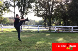 Tai Chi Chen Style 38 Form -to Sharp Mind & Physical Fitness