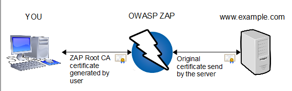 Penetration testing with OWASP ZAP: Mastery Course