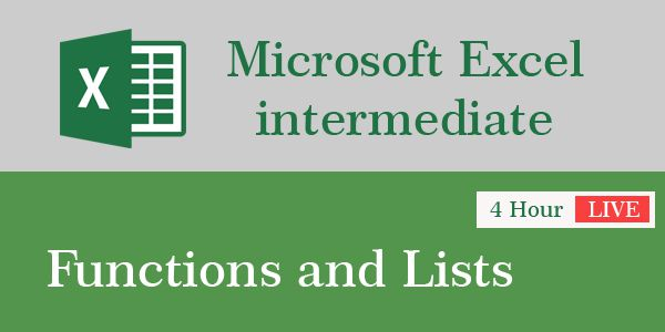 4 Hour Virtual Training on Microsoft Excel intermediate: functions and lists