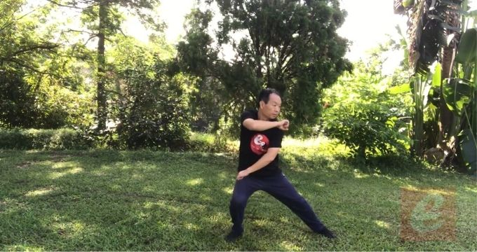 Sparring Tai Chi-Chen New Frame Routine 2 for Fitness --Gem revealed!  The grace and profound ancient ancient fighting art!