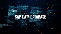 SAP Extended Warehouse Management - The Database of SAP EWM