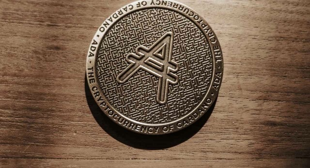 Altcoins: What You Have to Know
