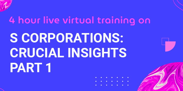 4 Hour Live Virtual Training on S Corps: Crucial Insights Part 1